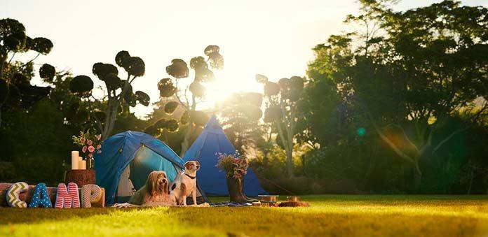 Jak wybrać sprzęt na camping? Plecaki, namioty i inne.